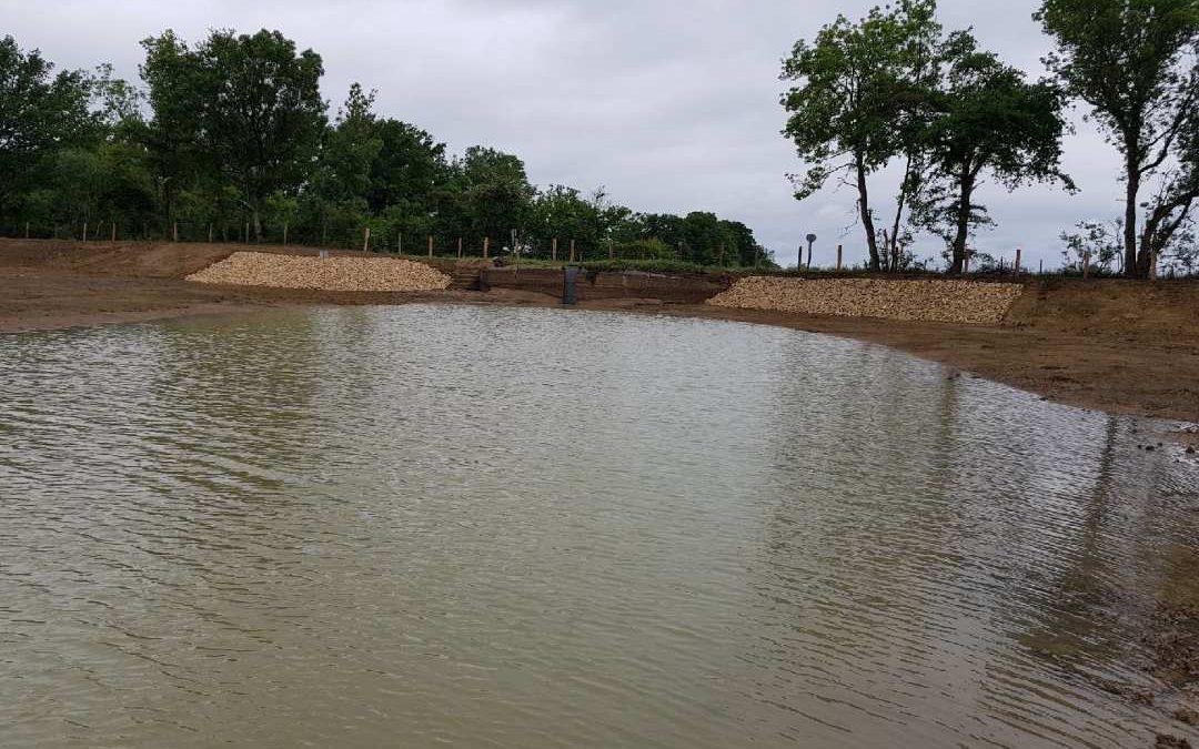 Réalisation d'un étang